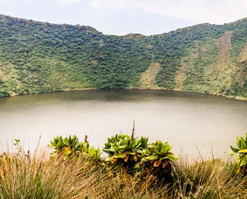 1 Day Mount Bisoke Hike
