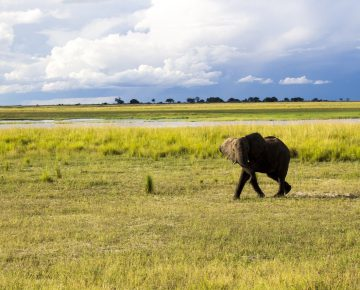 12 Days Spice of Rwanda Safari